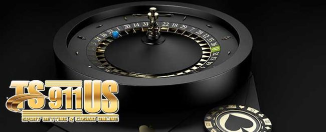 เว็บ-TS911